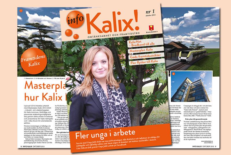 infokalix-webb